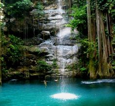 Cenotes in Southern Mexico