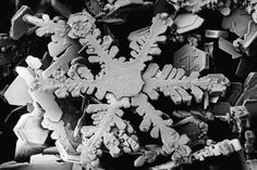 Snowflake under an electron microscope