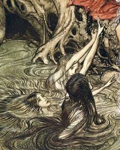 Artwork by Arthur Rackham English book illustrator Arthur Rackham, Art And Illustration, Botanical Illustration, Fantasy Kunst, Fantasy Art, Art Noir, Arte Sketchbook, Fairytale Art, Fairytale Drawings