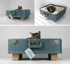 Cool suitcase cat bed8