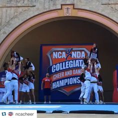 Check out this great video from the University of Georgia cheerleaders ; Cheerleading Videos, College Cheerleading, Win Or Lose, University Of Georgia, Great Videos, Family Traditions, Baseball Cards, Check