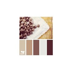 "Coffee color palette ""Big on Color"" ❤ liked on Polyvore featuring brown"