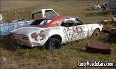 """68 firebird on the farm """"farmbird""""  - post rusty muscle car photos and project muscle cars for sale at RustyMuscleCars.com"""