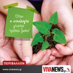 Η οικολογική στήλη του www.vivanews.gr !