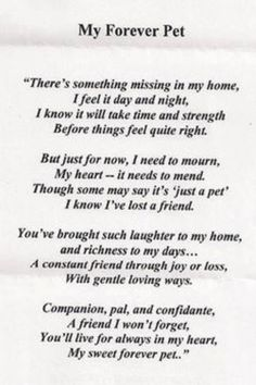 I love you Cosmo...no one can ever replace you. I know you'll always be with me and in my heart forever