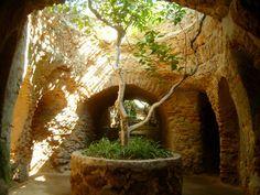 California's Best Kept Secret: A Century old Subterranean Garden