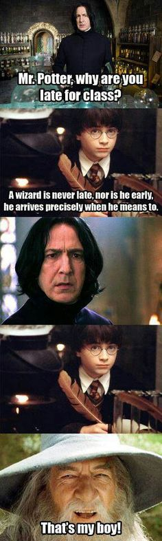 Harry Potter and LOTR