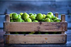Maersk, the global logistics company, and Rockstart, the startup accelerator, have released the names of the startups joining FoodTrack by Maersk. Integrated Pest Management, Food System, Weird News, The Selection, Limes, Fruit, Startups, Crate, Shelf