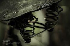 The saddle by patrikdalven