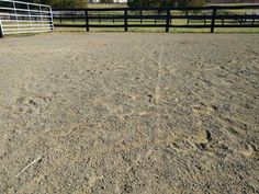 Bedding and footing options for your horse's outdoor space! http://www.proequinegrooms.com/index.php/tips/barn-management/outdoor-bedding-options-for-your-horse-s-run-or-in-and-out/