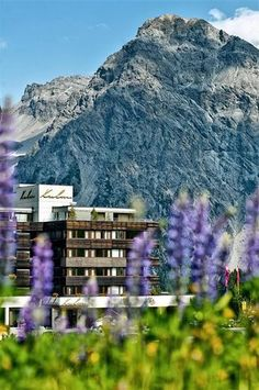 Arosa- Switzerland. Check out this hotel!!