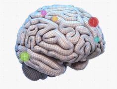 Mapa interativo te ajuda a entender como funciona o nosso cérebro | Magnatas