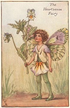 FLOWER FAIRIES/BOTANICALS: The Heart's-Ease Fairy; This is an original vintage Cicely Mary Barker Flower fairies colour print. It is not a modern reproduction, c1935; approximate size 11.0 x 7.0cm, 4.25 x 2.75 inches