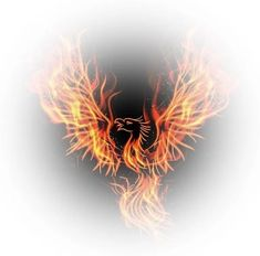 Power of the Phoenix Attunement - New Earth Energies Reiki Attunements