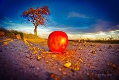 Jabłko od jabłoni daleko nie spada 😘