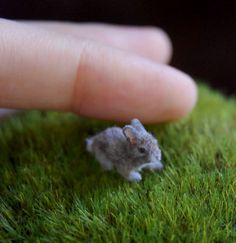 OOAK Dollhouse Realistic Miniature 1 12 ♥ Baby Rabbit ♥ Handmade Sculpture | eBay