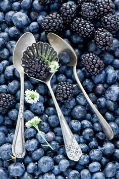 Berries ..