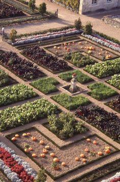 Potager Garden 23