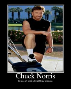 What would Chuck Norris Do? Chuck Norris Memes, Total Gym, Funny Animal Jokes, Funny Animals, Motivational Images, Famous Movie Quotes, Strong Women Quotes, Funny Movies, Jokes