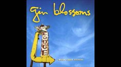 Gin Blossoms - Heart Shaped Locket
