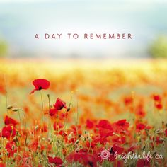 On the 11th hour of the 11th day of the 11th month, we honour those who fought for our freedom. Lest we forget. #RemembranceDay