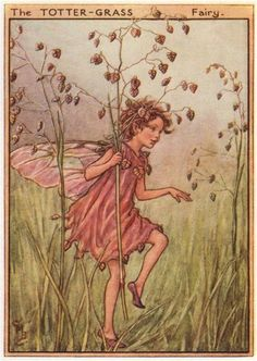 FLOWER FAIRIES/BOTANICALS: The Totter-Grass Fairy; This is an original vintage Cicely Mary Barker Flower fairies colour print. It is not a modern reproduction, c1948; approximate size 11.0 x 7.5cm, 4.25 x 3 inches