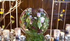 Fishbowl purples