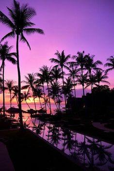 Super Ideas for summer nature photography sunset palm trees Summer Wallpaper, Beach Wallpaper, Cute Wallpaper Backgrounds, Pretty Wallpapers, Iphone Wallpaper, Couple Wallpaper, Beautiful Nature Wallpaper, Beautiful Sunset, Beautiful Landscapes