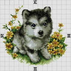 Baby wolf puppy husky cross stitch for clock Kawaii Cross Stitch, Cross Stitch Baby, Cross Stitch Animals, Cross Stitch Charts, Cross Stitch Designs, Cross Stitch Needles, Beaded Cross Stitch, Cross Stitch Embroidery, Cross Stitch Numbers