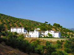 Cortijo La Fe Guesthouse in Andalusia Spain