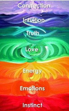 Connection ° Intuition ° Truth ° Love ° Energy ° Emotion ° Instinct °