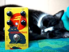 The Katzenkönig and his queen (Maya also from @catalinbread) #effectsdatabase #effectspedals #guitarpedals #guitareffects #pedals #guitarfx #fxpedals #pedalporn #guitarporn #gearporn #katzenkonig #catalinbread