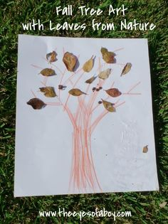 Fall Tree Art with Leaves from Nature
