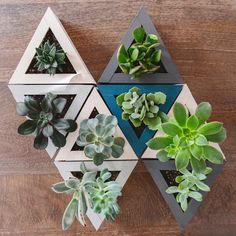 DIY Geometric triangle planters! A fun centerpiece for holidays, weddings, showers and everyone can take a piece home. | via Yellow Brick Home