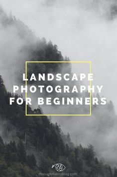 8 Tips for better Landscapes Photography. Special Beginner Photographers. Switzerland Photography   Interlaken   Lakes   Beautiful Places   Swiss Alps   Nature   Landscape Photography #landscapephotography #photographytips #beginnerphotography
