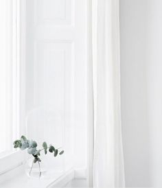 Eucalyptus sprays in vase on a minimal windowsill in white interior Leaves Wallpaper Iphone, Pastel Wallpaper, Aesthetic Backgrounds, Aesthetic Wallpapers, Nature Color Palette, Minimal Photography, White Aesthetic, Aesthetic Pictures, Wall Collage