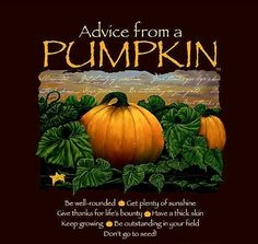 Advice From a Pumpkin T-shirt. Advice from a Pumpkin Text. Small Armpit to armpit: Length XX-Large Armpit to armpit: Length Cotton - Preshrunk. Large Armpit to armpit: Length Advice Quotes, Truth Quotes, Quotable Quotes, Wisdom Quotes, Thick Skin, Nature Quotes, Spiritual Quotes, True Nature, Autumn Inspiration