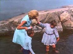 Vi på saltkråkan (1964-)