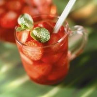 Rocket Farms - Strawberry Mint Soda
