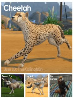 Wild Animals as Pets for The Sims 4