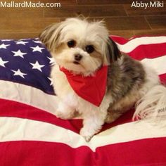 An adorable girl on her new MallardMade in the USA dog bed. @abby.miki
