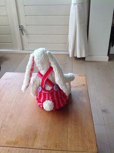 Achterkant konijn