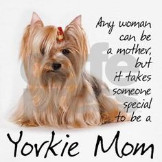 This Yorkshire Terrier gift will delight any Yorkie Mom.