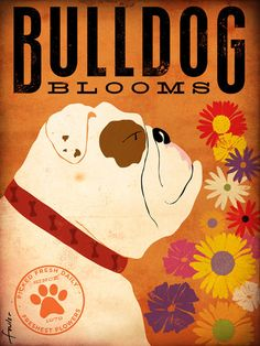 Items similar to English Bulldog Flower company original graphic illustration giclee archival signed artists print by Stephen Fowler on Etsy White Pug, Cute Bulldogs, Flower Company, Poster Prints, Art Prints, Home Wall Art, Print Artist, Dog Art, Vintage Ads