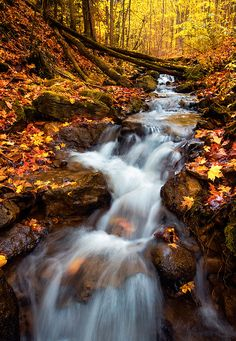 Autumn Falls by Dave McEllistrum on 500px