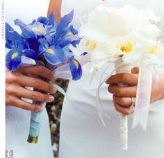 I like irises too...