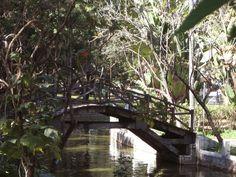 Parque Municipal de BH: um lugar para se conhecer. - Dolce Casa Studio