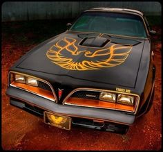 1977 Pontiac Trans Am S/E / Special Edition (black paint with gold accents & striping) with Hurst-style T-tops