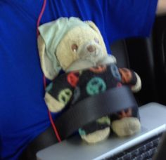 Lost on 18/04/2014 @ San Francisco airport - Airtraam. Plush toy was in a backpack lost on an airtram at the San Francisco International airport. The toy has been in our family 18 years and is a one of a kind. We would greatly appreciate its return h... Visit: https://whiteboomerang.com/lostteddy/msg/papmzb (Posted by Hillary on 29/06/2014)