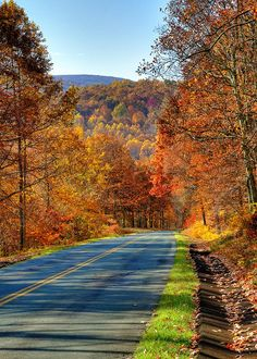 winding roads & leaves changing colors